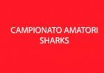 campionato amatori sharksl